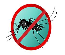 Tinh dầu đuổi muỗi, côn trùng
